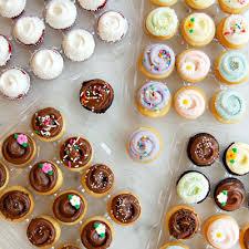 Magnoliabakeryonlinecom Mini Cupcake Assortments