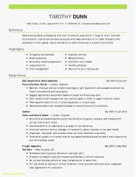 Best Professional Resume Format Adorable Professional Resume Formats Best Of 48 Proper Resume Format Pour