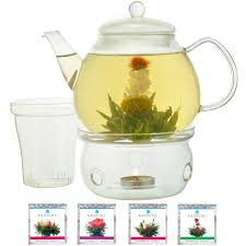 flowering tea set grosche glasgow glass teapot with infuser with