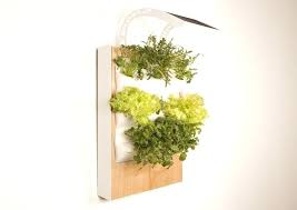 indoor hydroponic wall garden mounted herb gardening vertical vegetable