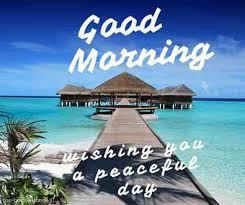 good morning wishing you a peaceful day ahead