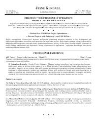 Best Executive Resume Examples 2018 That Work It And Sa