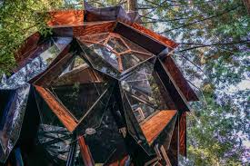 tree house pictures. Tree House Pictures E