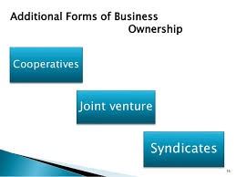 forms of ownership forms of ownership