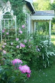 English Cottage Garden Flowers  Stock Flower Images  Pinterest Romantic Cottage Gardens