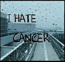 I Hate Cancer Quotes Adorable I Hope Someone Finds A Cure For Cancer A Mourning Mom