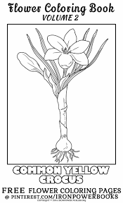 Botanical Beauty Flower Coloring Pages Flower