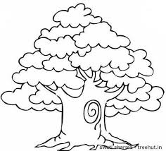 Small Picture Trees Coloring Pages and Clipart