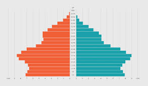 Create Pyramid Chart How To Make An Animated Pyramid Chart With D3 Js Flowingdata