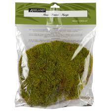 Moss Mats Ashlandar Preserved Moss 105 Cu In Natural