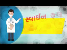 important information for swine flu in gujarati  important information for swine flu in gujarati