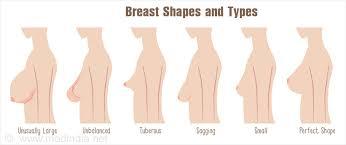 Perfect breast shapes nipple women