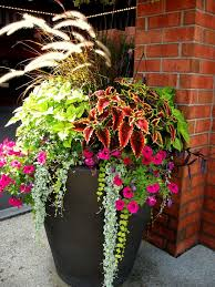 Small Picture Best 25 Front porch planters ideas only on Pinterest Front