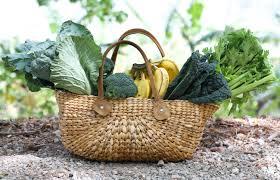 Benefits Of Raw Food R A W A N D F R E E