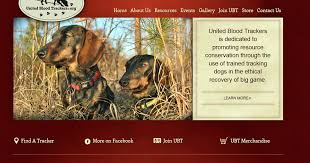 Born To Track Blog When You Cant Find The Deer You Have Shot A