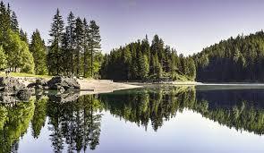 Resultado de imagen de La simetría está en la Naturaleza que también, en lo simétrico, nos muestra la Belleza
