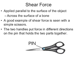 shear force example. 16 shear force example