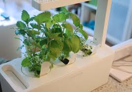 and grow smart herb garden