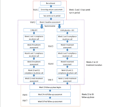 Trial Flow Chart Chm Chinese Herbal Medicine Sfc