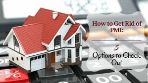 Pay House Off Early Calculator How To Get Rid Of Pmi 5 Options To Check Out