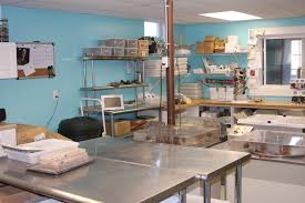 Commercial Kitchen Pictures