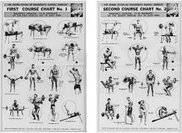 Back Exercises Gym Chart The Tight Tan Slacks Of Dezso Ban The Weider System