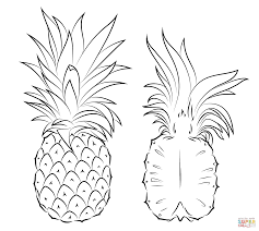 cute pineapple drawing. full size of coloring page:cute drawing a pineapple drawn line 7 page large cute e