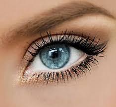 gold wing natural eye makeup for blue eyes