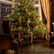 Christmas is fast approaching, it will be September next month hand before  we now it. Stores are busy with people buying Christmas trees, ...