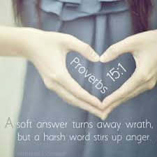 Image result for proverbs 15:1