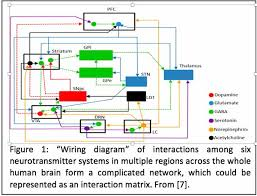 can a schizophrenia simulator explain imbalances in the brain wiring diagram of 6 neurotransmitter systems 600 x 457