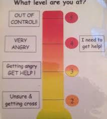 Visual Five Point Scale Behaviour Charts Sen Autism Odd