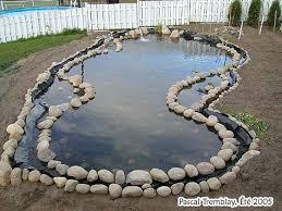 the water garden basins design ideas for water gardening edging a garden pond