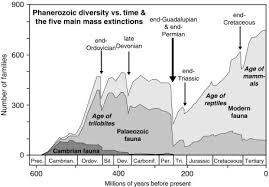 Mass Extinction An Overview Sciencedirect Topics