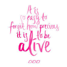 Life Is Precious Quotes Mesmerizing Life Quotes