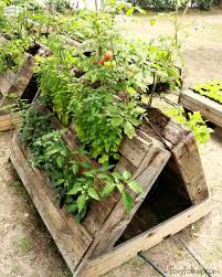 perfect raised garden beds made