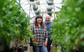 stacia and fred monahan stand between rows of lettuces in their greenhouse at stone gardens farm