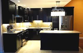 Kitchen Cabinets Whole Whole Kitchen Cabinets