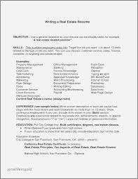 Resume Sample Tourism Career Objective Awesome Information