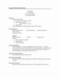 Free Resume Templates No Download Resume Samples No Work Experience Free Download Fresh High School 15