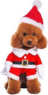 Mogoko <b>Dog</b> Cat Christmas Santa Claus <b>Costume</b>, Funny <b>Pet</b> ...