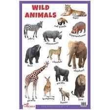 wild animals chart. Fine Animals Wild Animals Educational Chart Intended N