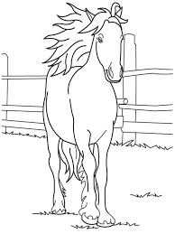 Adult Horse Coloring Pages To Print Wild Horse Coloring Pages To