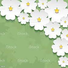 3d Flower Sakura Stock Illustration ...