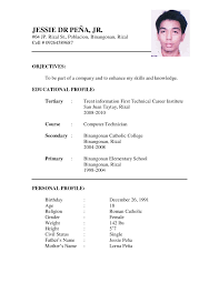 example of a written cv application sample of resume format for job application application format