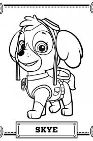 Small Picture Gallery For Paw Patrol Coloring Page Paw Patrol Pinterest