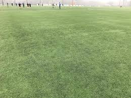 artificial turf field. Customer Is Responsible For OFF-LOADING 2,500 Lbs Per Roll. Residential Shipping Not Available Artificial Turf Field