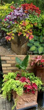 Small Picture 25 best Garden pots ideas on Pinterest Potted plants Potted