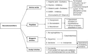 Neurotransmitter Chart Classification Of Neurotransmitters Download Scientific
