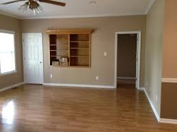 light brown paint colorsLight Brown Wall Color  Home Design